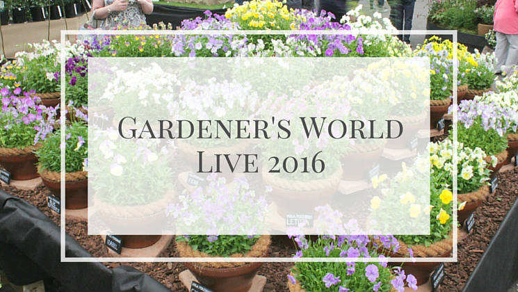 Take a look at the beautiful plants and flowers on show inside the Floral Marquee at the Gardener's World Live Floral Marquee, June 2016