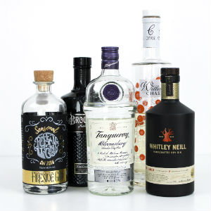 A selection of five gins that are ideal to drink in winter - including gins from Poetic License, Brockmans, Tanqueray, Whitley Neill and Chase