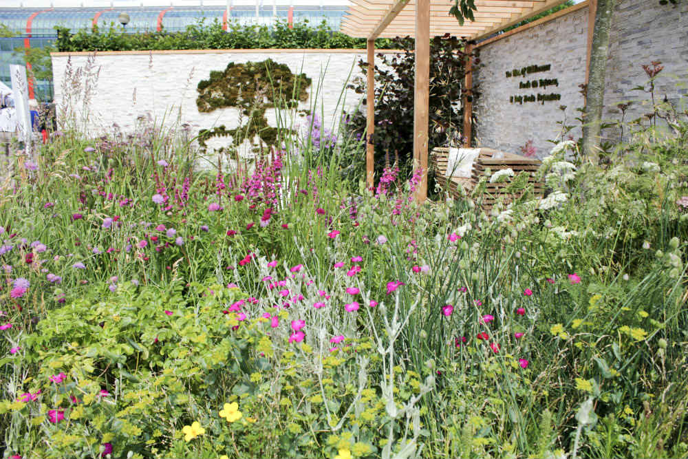 Wildflower planting in 'Wetland Plants - The Idea of Wilderness' Garden, one of the show gardens at Gardeners World Live 2017