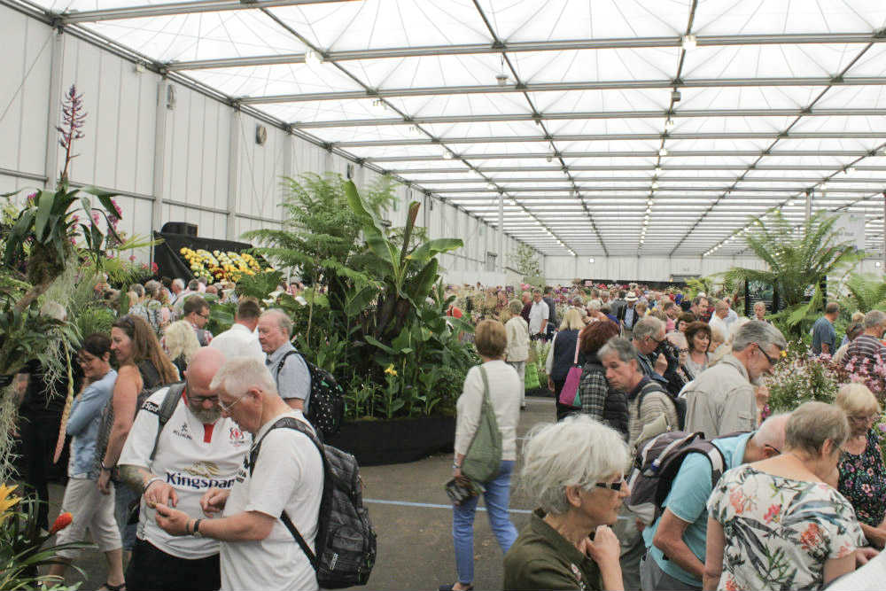 No visit to Gardeners World Live would be complete without a look around the Floral Marquee. And this year the flowers on display were as stunning as ever.