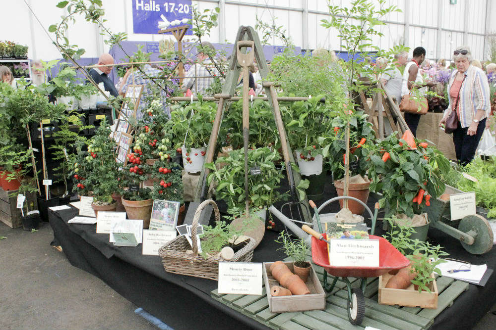 The Pennard Plants stand at the BBC Gardeners World Live exhibition 2017