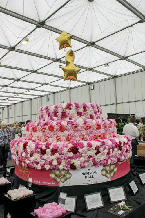 A peony birthday cake to celebrate Gardeners World's 50th birthday on the Primrose Hall stand