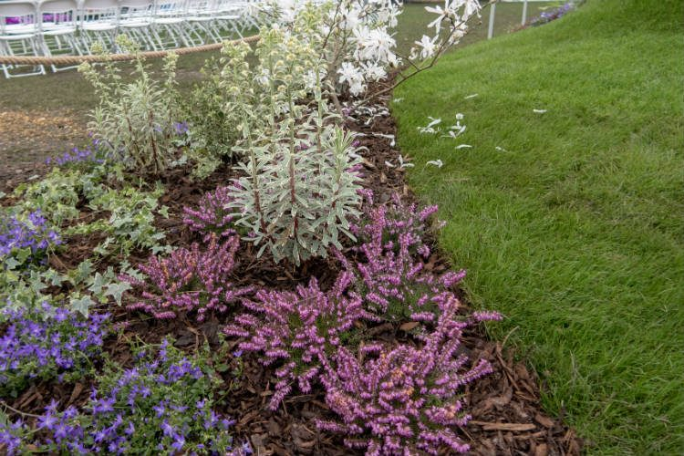 Soft planting in the borders of Cwm Caerdydd - one of the show gardens at the RHS Cardiff Flowershow 2018