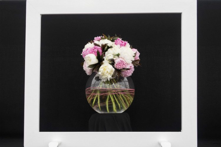 A glass vase filled with pink and white peonies, against a black background and with a white frame in front. Seen on the Primose Hall Nursery stand at RHS Cardiff 2018