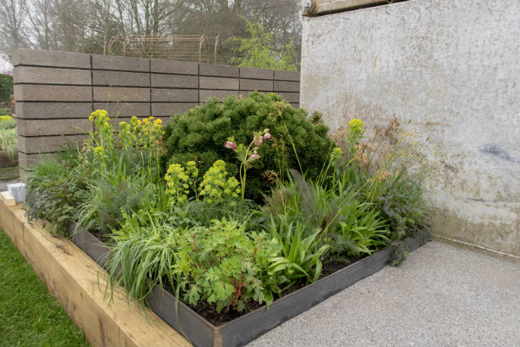 Grasses and soft herbaceous planting soften the industrial appearance of The Urban Regeneration Garden at RHS Cardiff 2018