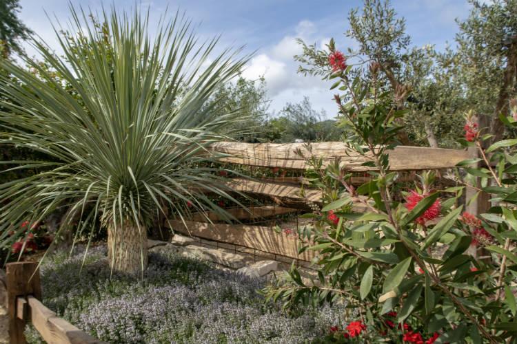 Billy's Cave, a Mediterranean style show garden at the RHS Malvern Spring Festival 2018