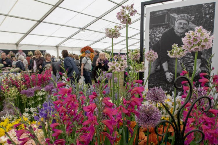 Avon Bulbs, RHS Master Grower at the RHS Malvern Spring Festival 2018