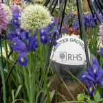 RHS Malvern Spring Festival 2018: The Floral Marquee