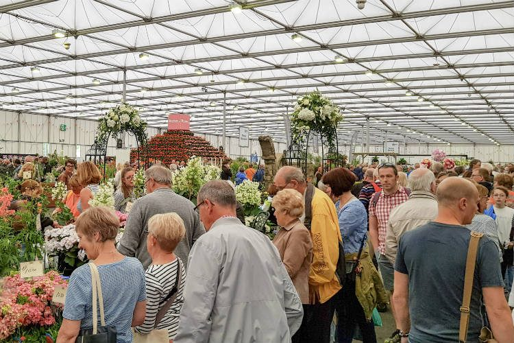 Inside the Floral Marquee at BBC Gardeners' World Live 2018