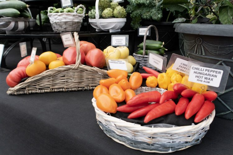 Stunning vegetables on the W Robinson & Son stand