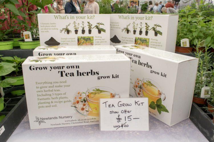 Newlands Nursery's Grow your Own Tea Herbs kit