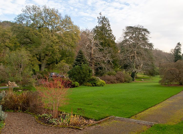 The gardens at Gliffaes Country House Hotel, with a neat lawn and lots of large trees in the background
