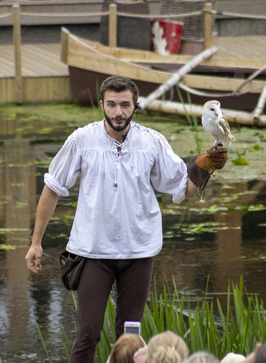 A falconer holds a barn owl on his gloved hand in the Falconer's Quest at Warwick Castle, Warwickshire, UK