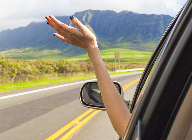 A woman's hand waves out of a car window on a sunny day
