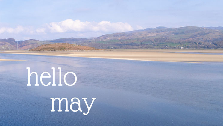 Find out what we've got coming up during the merry month of May at SallyAkins.com!